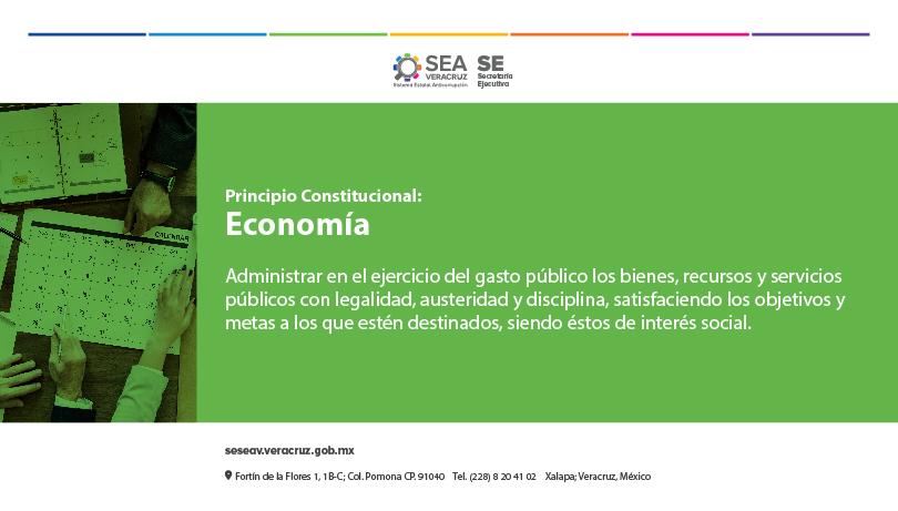 SESEAV-PRINCIPIOCONSTITUCIONAL-ECONOMIA-600x450-01