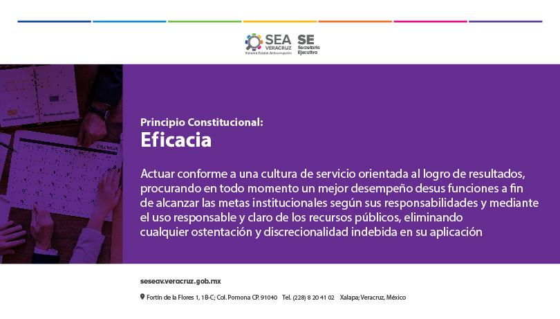 SESEAV-PRINCIPIOCONSTITUCIONAL-EFICACIA-600x450-01